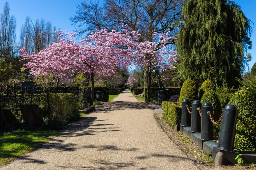 Assistens Cemetery | © Thomas Rousing / Flickr