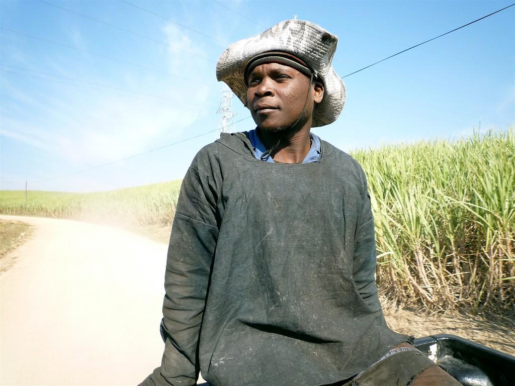 Sugar cane plantations privide jobs to © David Barrie/Flickr