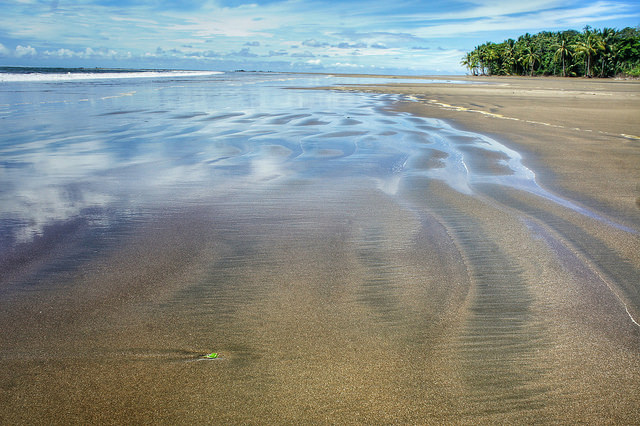 Low tide magic