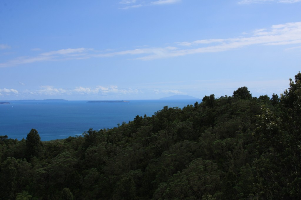 View from Rangitoto Summit | © RobB7/Flickr