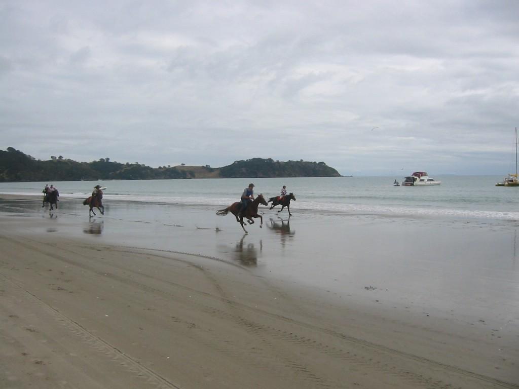 Onetangi Beach Races | © brent simpson/Flickr