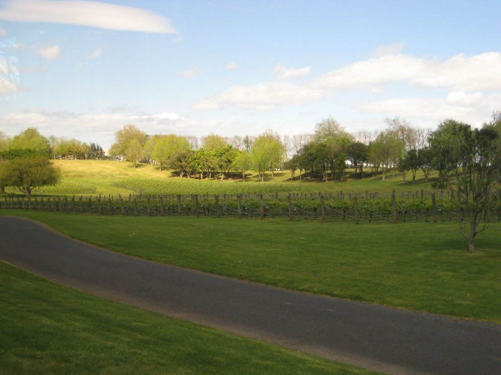 Villa Maria Winery Mangere | © Sustainable Initiatives Fund Trust/Flickr