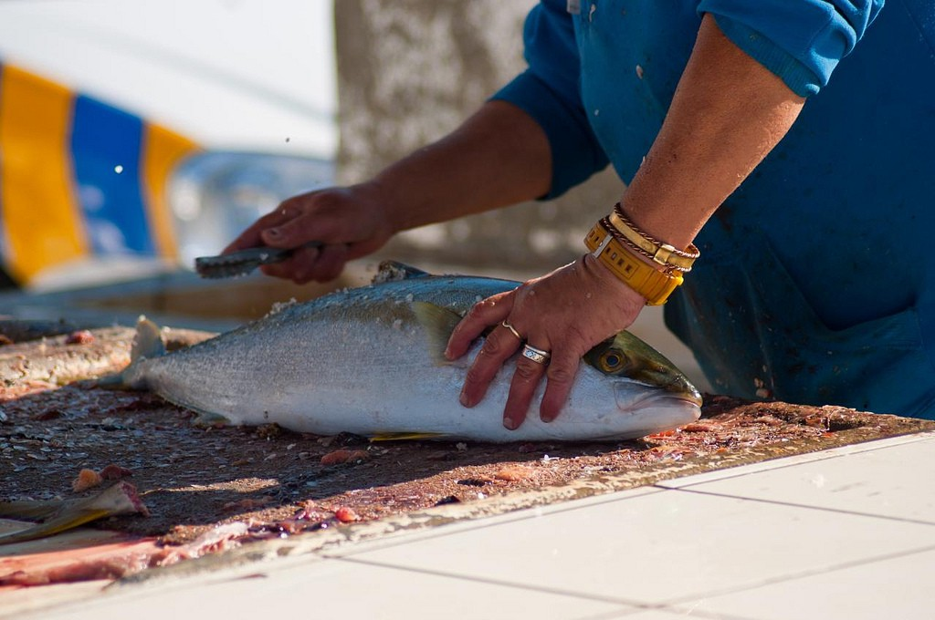Fresh fish being prepared for a customer at Kalk Bay Harbour, Cape Town © Wesley Nitsckie/Flickr