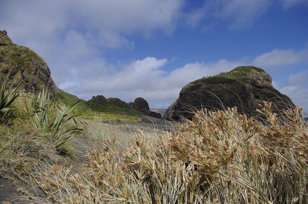 Whatipu Beach, along the Hillary Trail | © oh_jojojo/Flickr