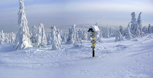 Velka Destna, the highest peak in Orlicke Mountains / ©Bretislav Valek / Wikimedia Commons