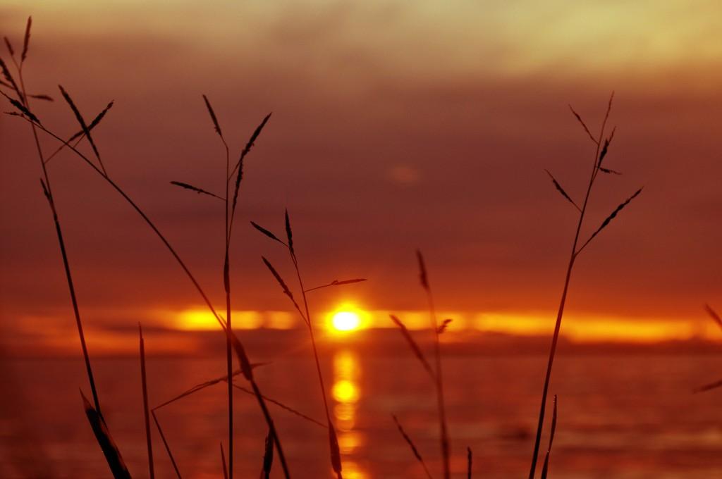 Fiji Sunset | © Kyle Post / Flickr