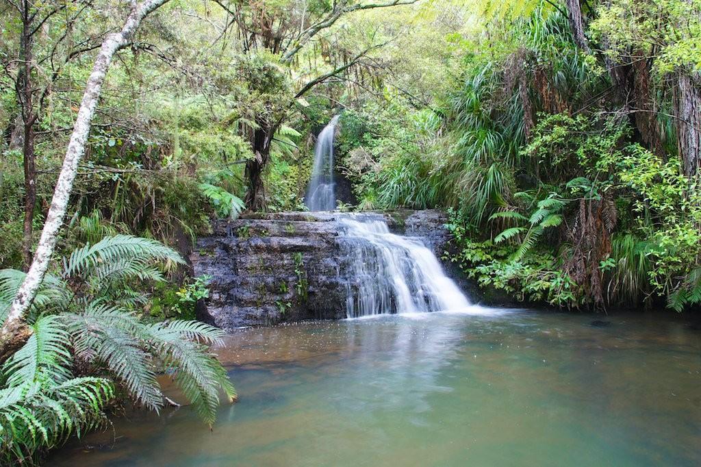 Omeru Reserve | © ItravelNZ/Flickr