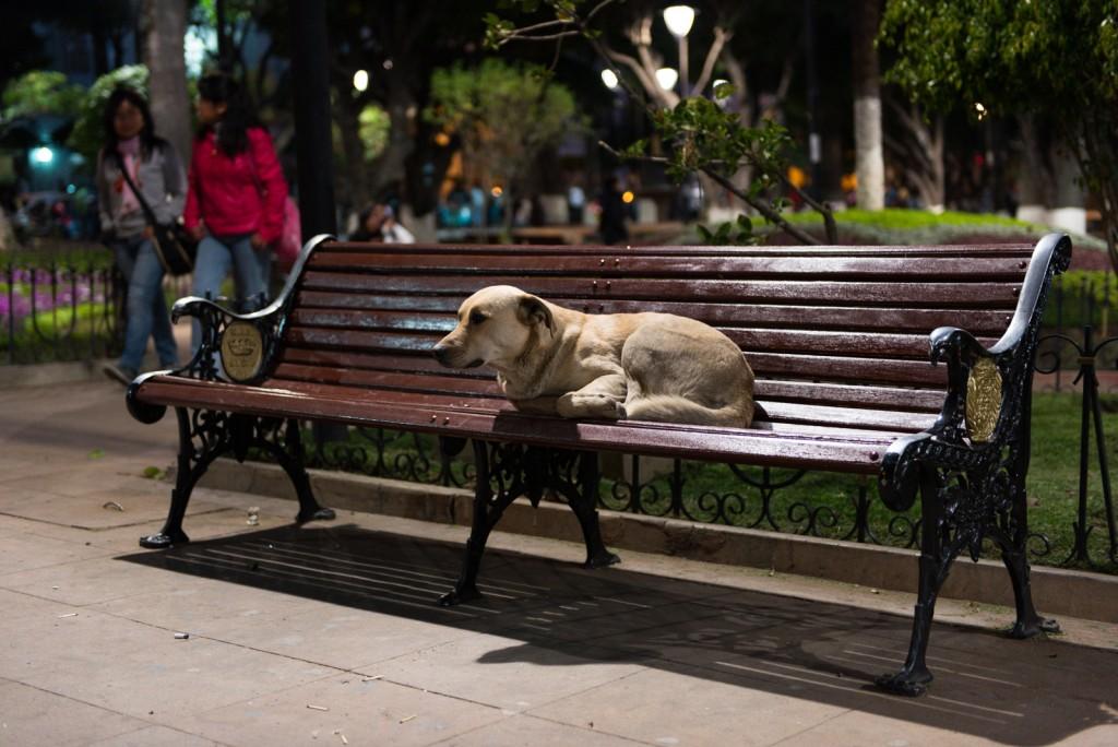 Main Plaza Sucre | © vincentraal/Flickr