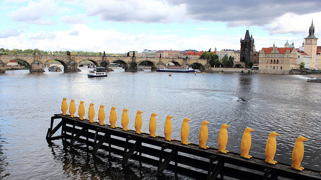 Yellow penguins near Kampa Museum / ©Alasdair Mckenzie / Flickr