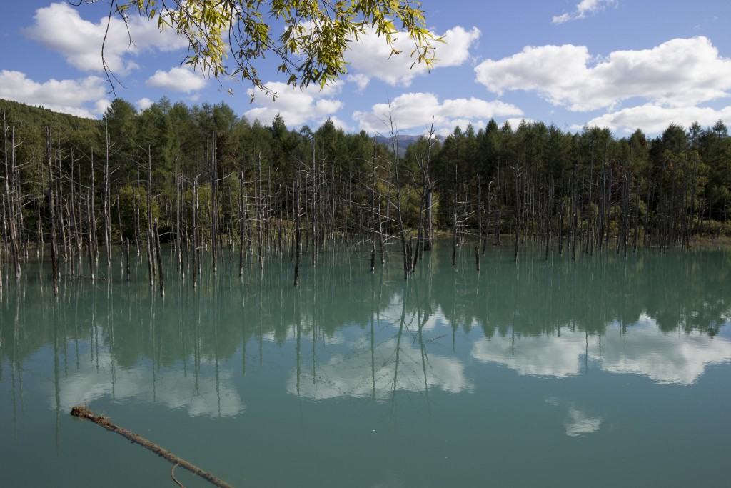 Blue Pond | ©ray.k / Flickr