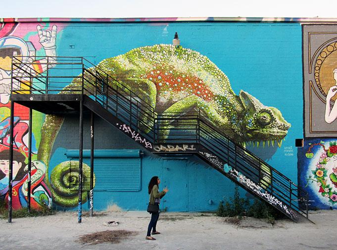 Chameleon at HUE Festival, Houston © Anat Ronen