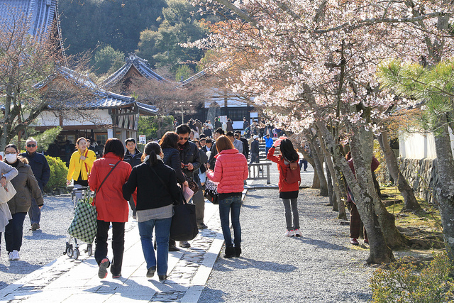 Stroll the Traditional Streets of Arashiyama