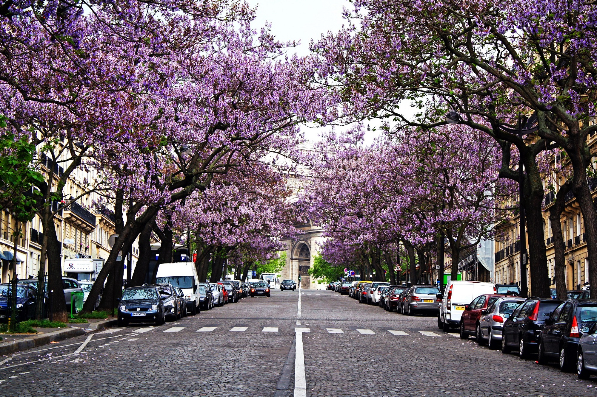 Image result for spring season in france