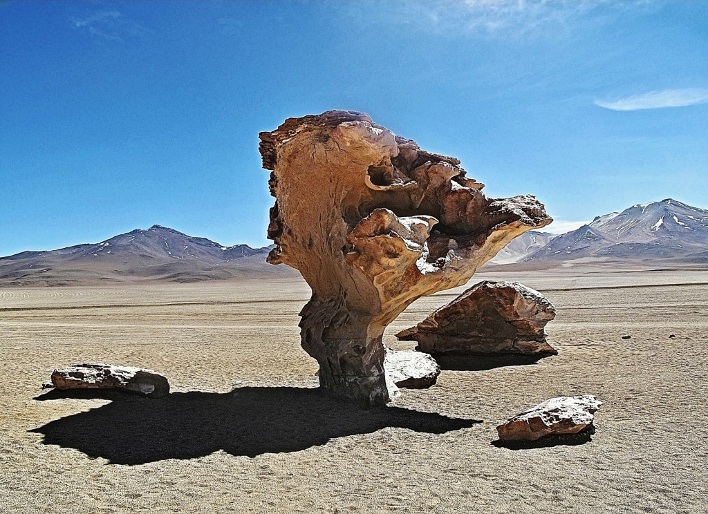 Stone Tree | © capobleu2a/Flickr
