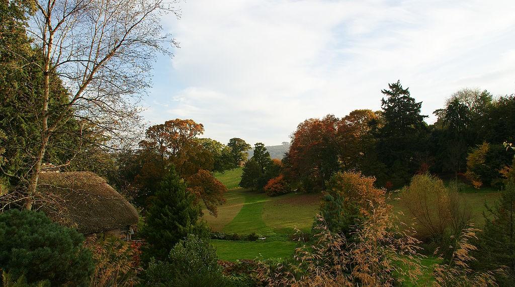 Dartington Hall gardens in autumn ©Herbythyme/Wikimedia