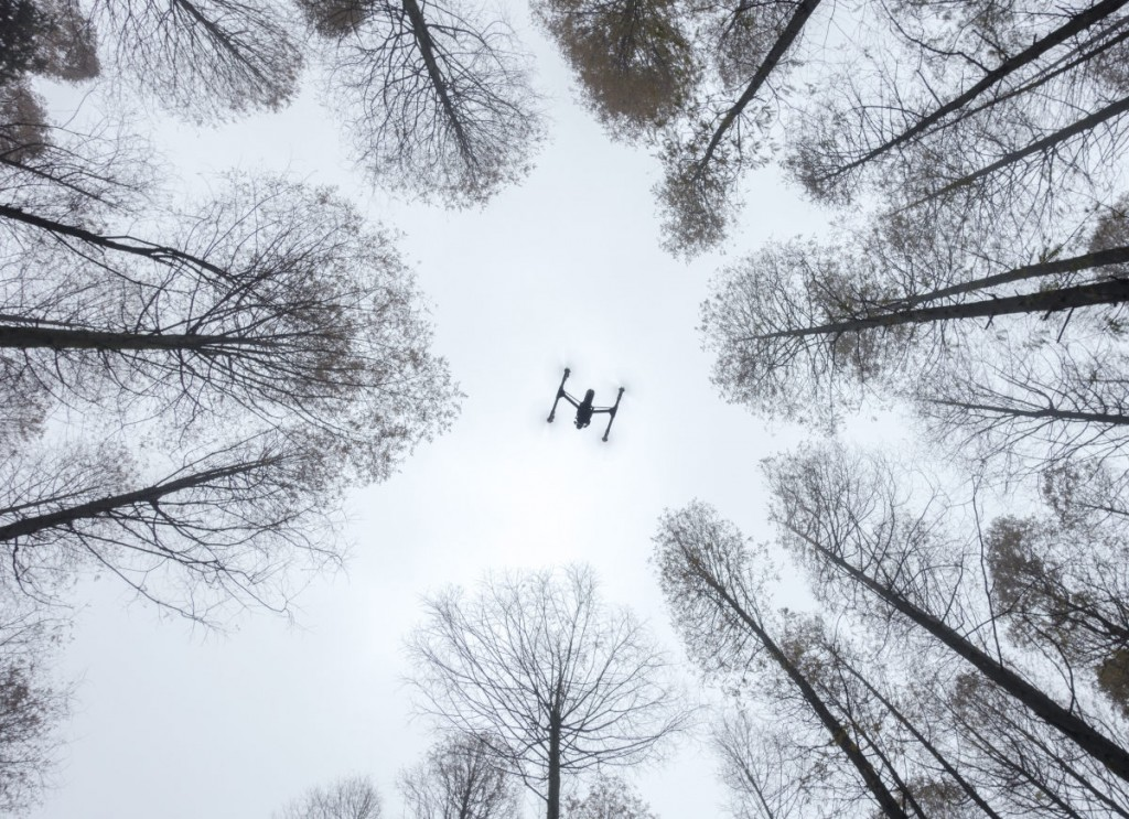 Enthusiast Drones in Use - 2nd - 'Inspire in Use' | © Lili Cui / Skypixel