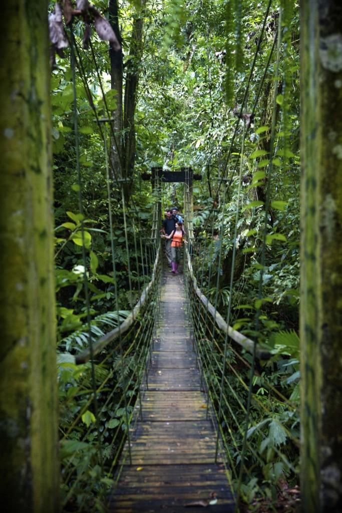 Stroll down a suspension bridge  ©Bryan Beasley
