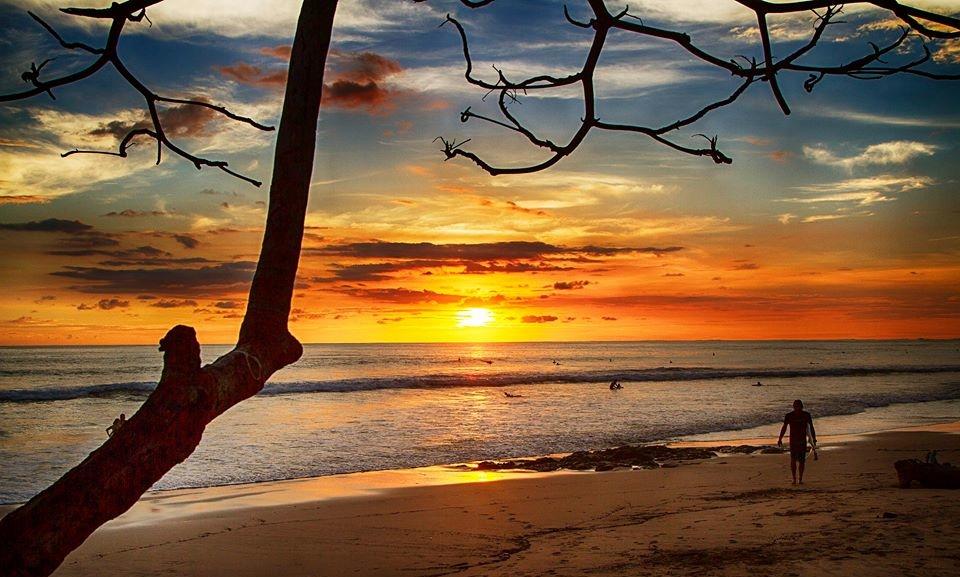 Surfer's paradise/Jeff Biege Photography