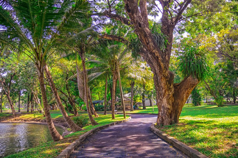 Lumpini Park| ©natalia_maroz/Shutterstock