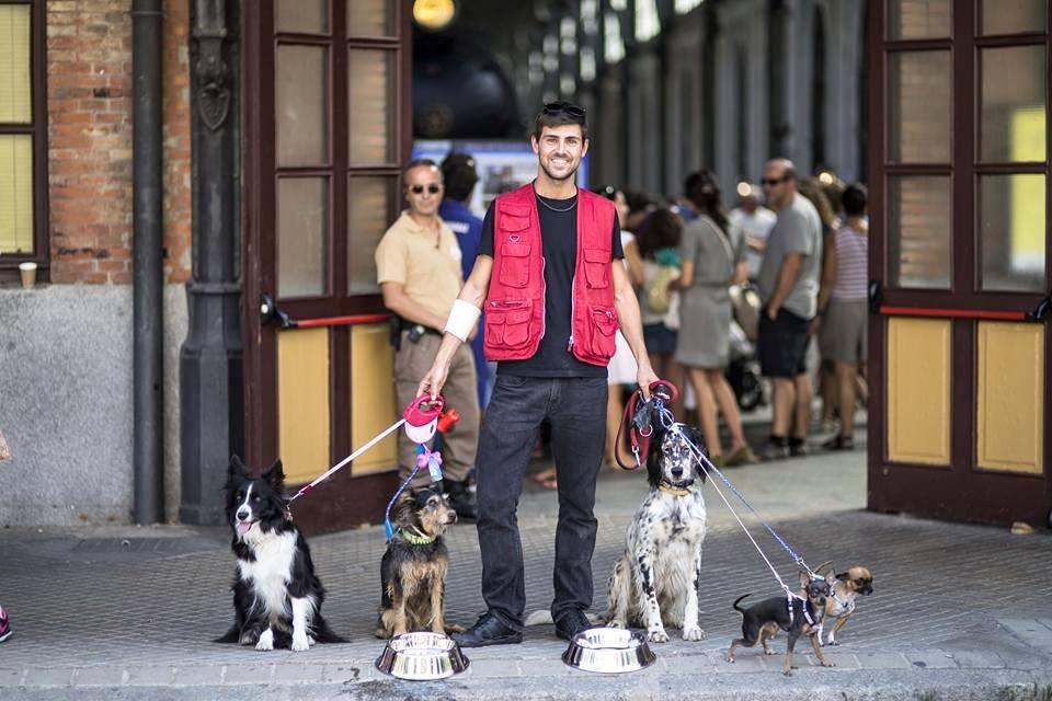 Pet-sitting is available | © Mercado de Motores