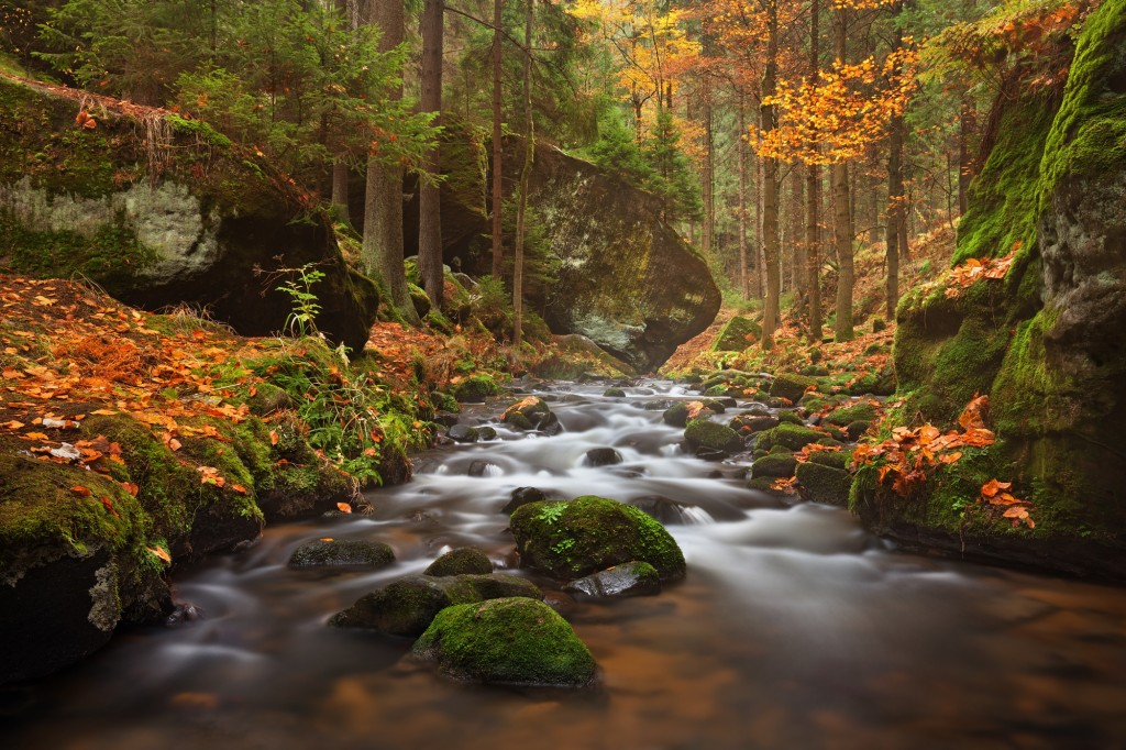 Bohemian is particularly magical in the autumn |© Northernhikes.com