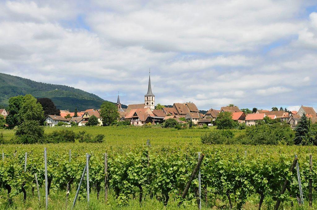 Mittelbergheim │© CTHOE / Wikimedia Commons