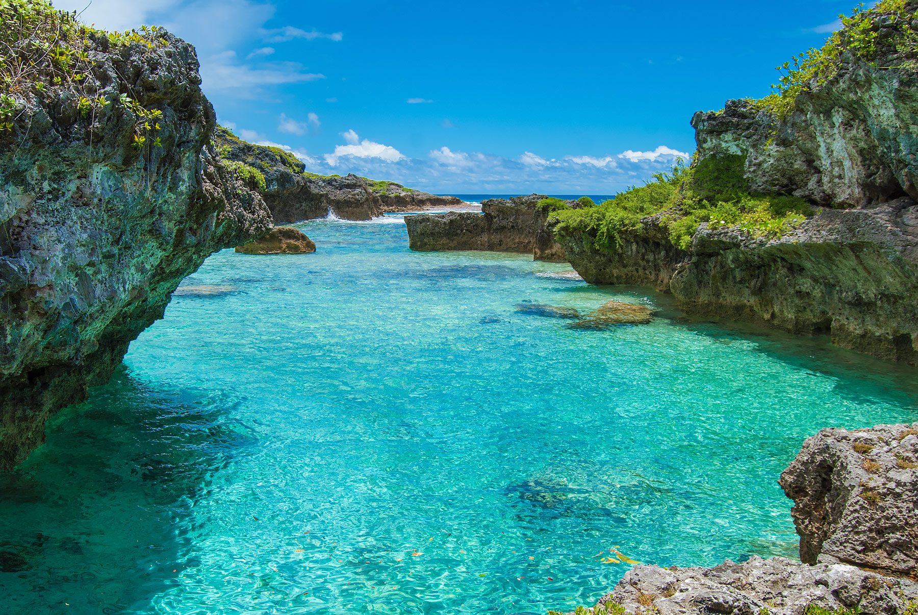 7 Reasons to Visit Niue, The Pacific Island You've Never ...