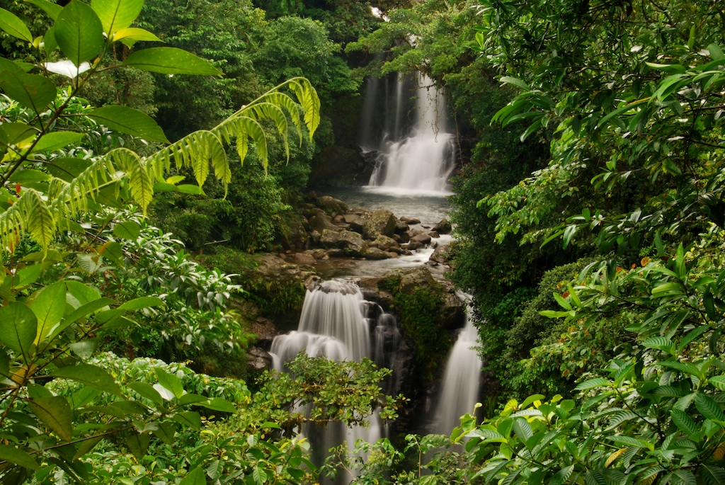 Rara Avis Waterfall -Andres Madrigal