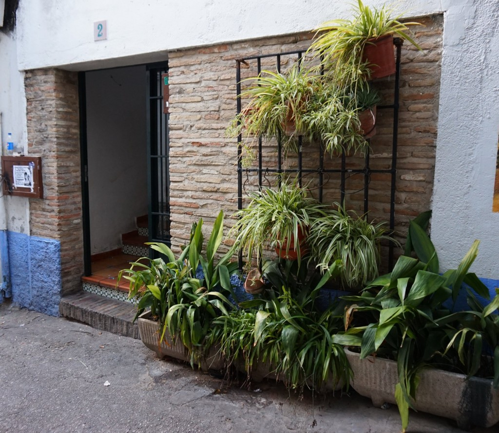 "The so-called ""Magic Door"" in granada; courtesy of Encarni Novillo"