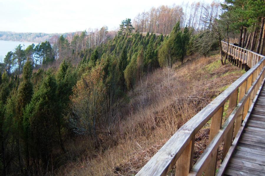 Juniper Valley | © Vilensija/Wikimedia Commons