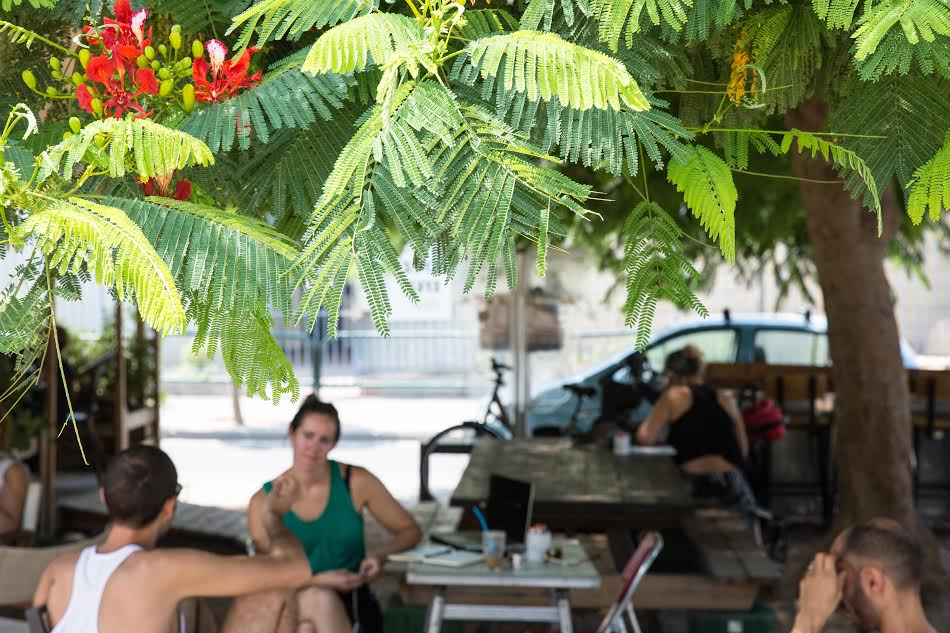 Cafe Shapira is the hot new cafe in southern Tel Aviv   © Yifat Yogev, courtesy