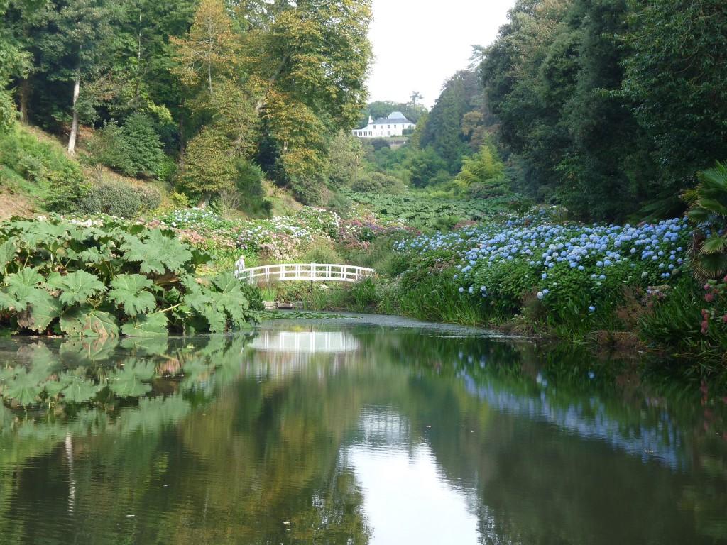 Trebah Garden © Michael Clarke/Flickr