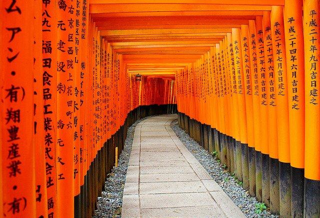 Tunnel of torii shrine gates