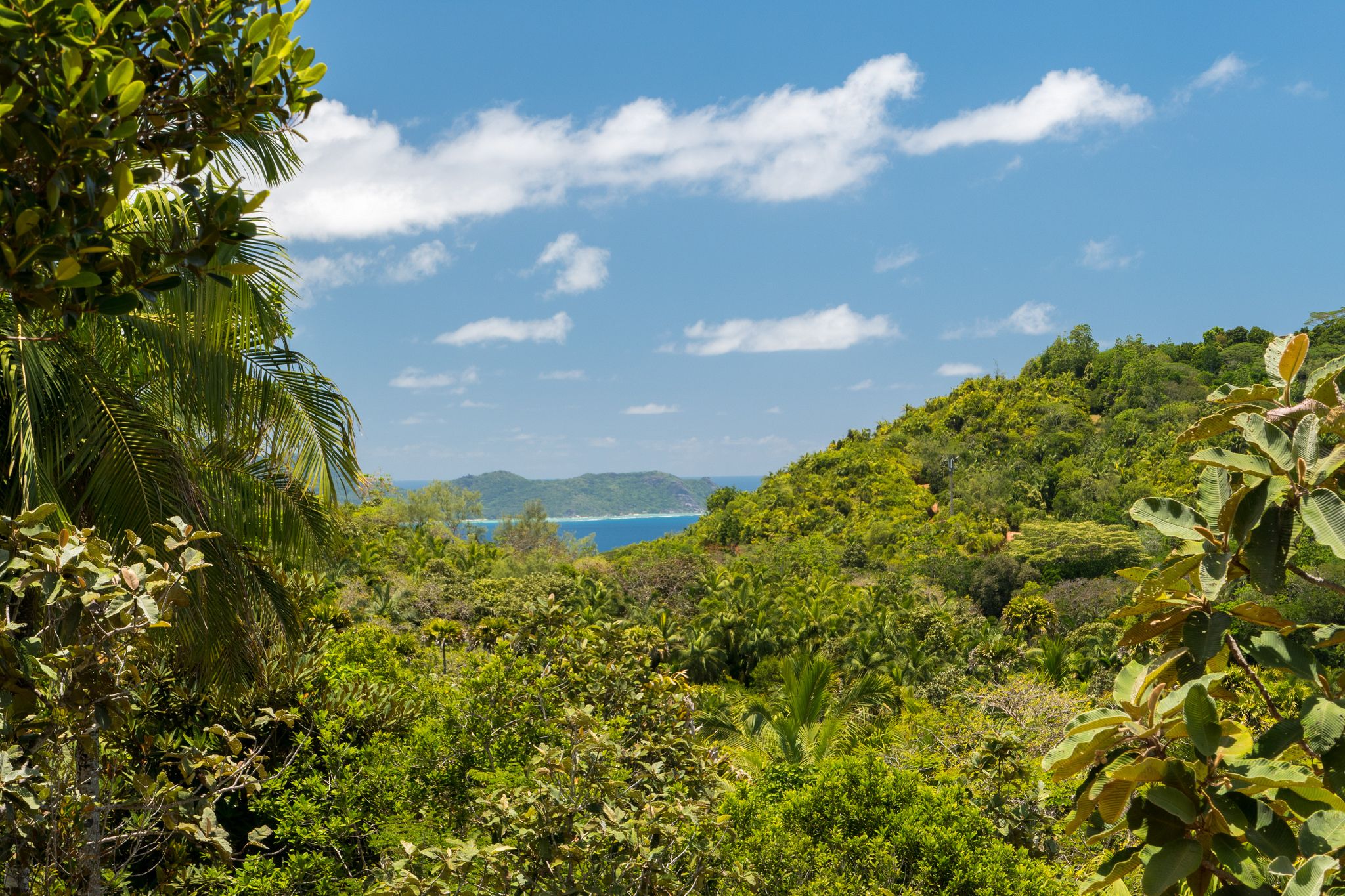 The lookout at the Vallee De Mai  ©So Seychelles/flickr