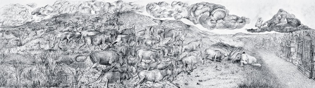 A herd of wildebeest find a dead elephant © Andries Botha