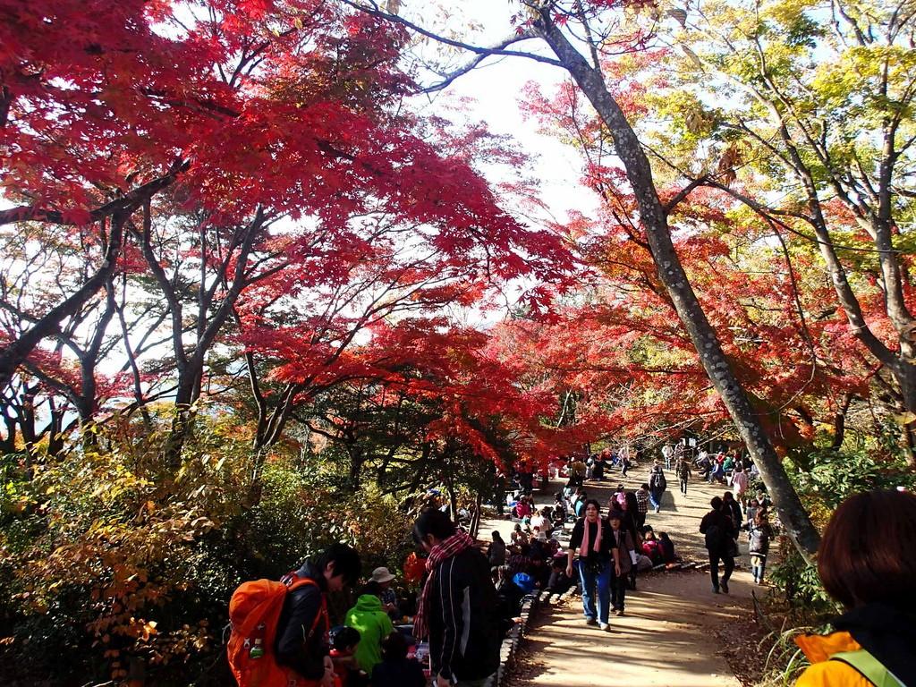 Mount Takao | © celiaintokyo/Flickr