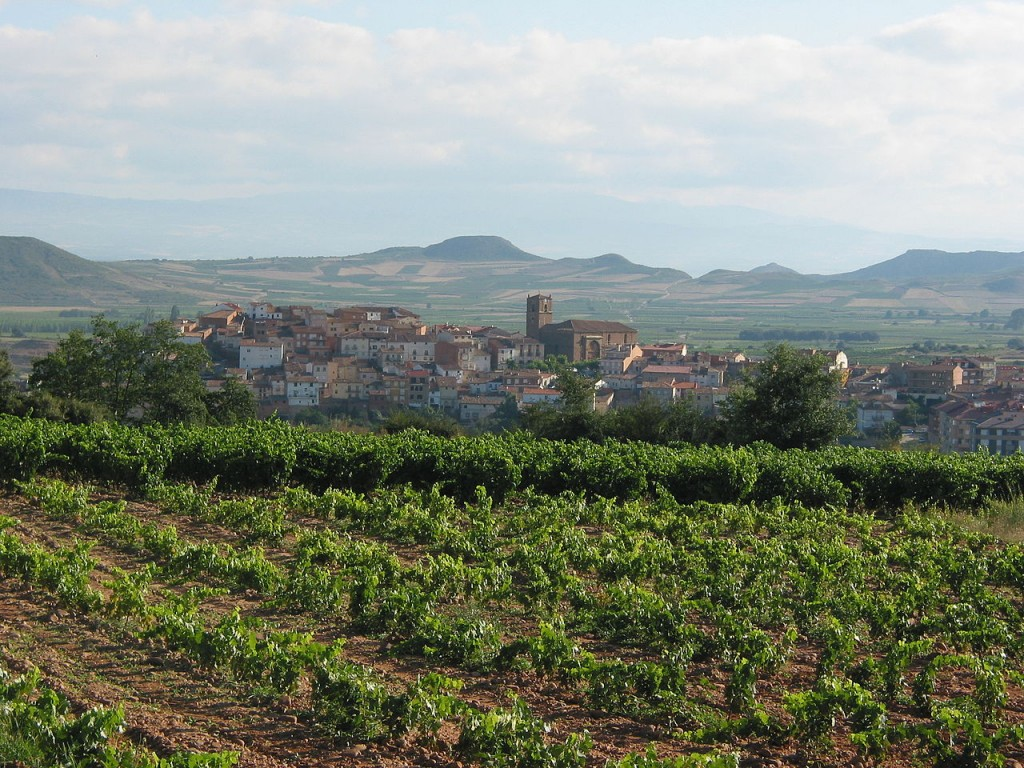La Rioja wine region, Spain | ©Gurrea / Wikimedia Commons