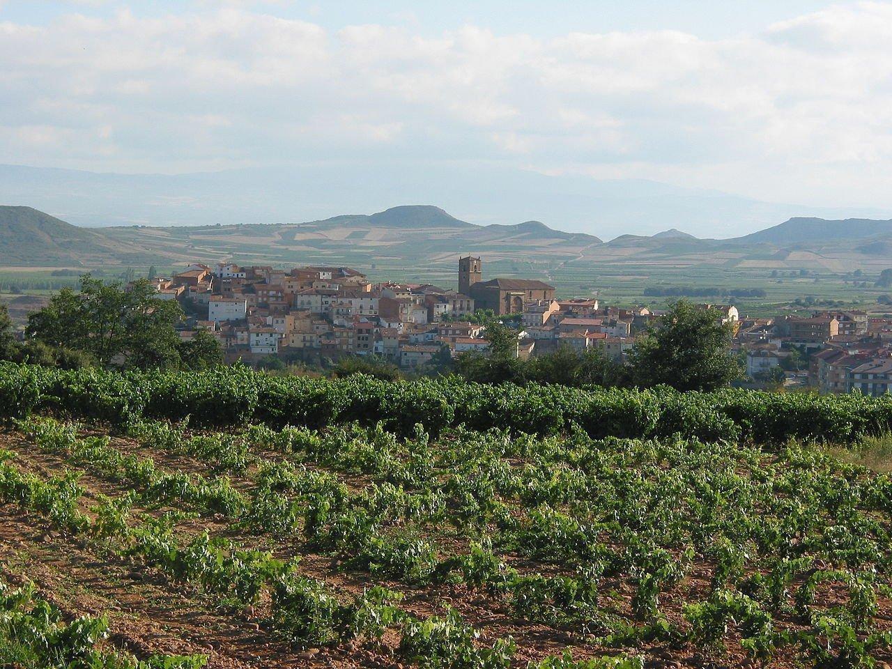 La Rioja wine region, Spain | ©Gurrea / Wikimedia Commons