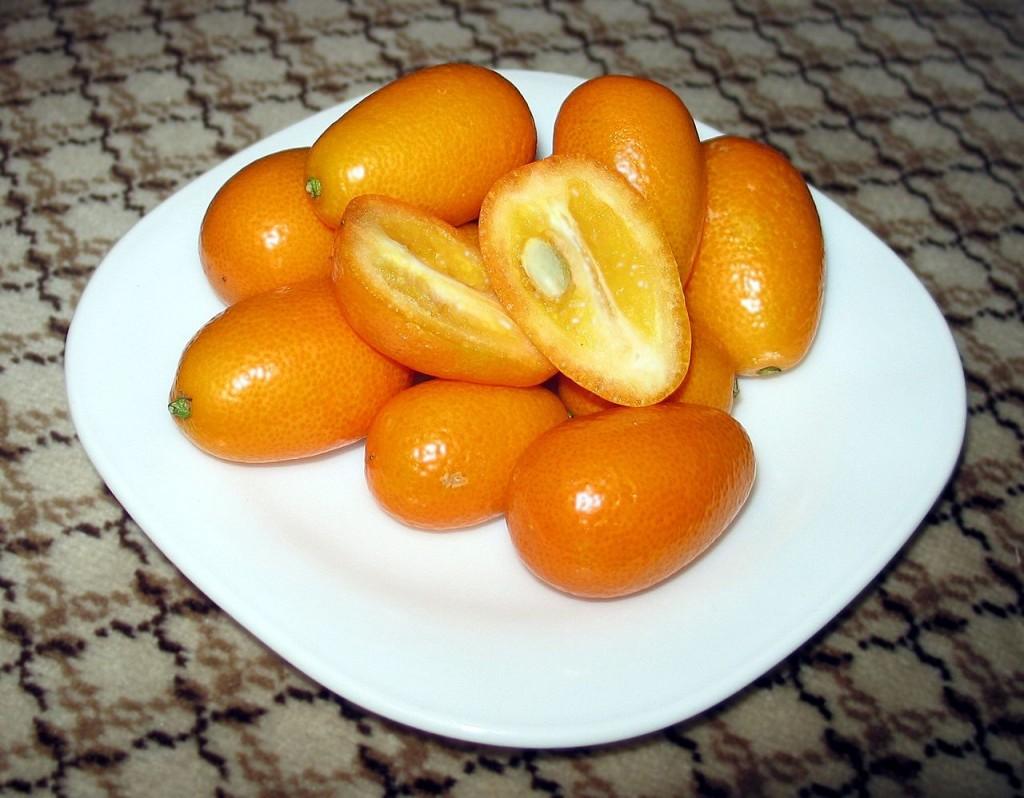 Kumquats © Sangfroid/WikiCommons