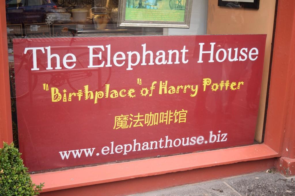 The Elephant House | © Caitlin Bonnar/Flickr