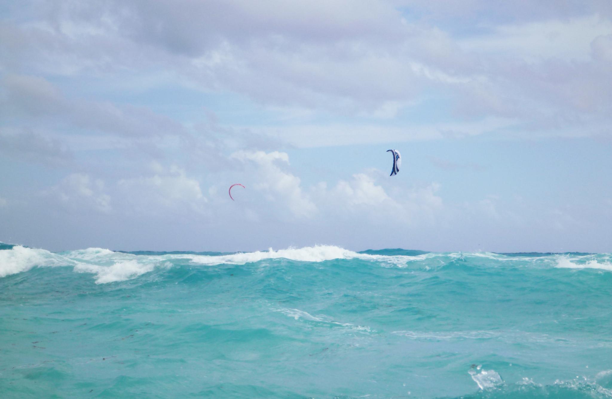 Cancún, Playa Delfines   © Laila Goubran/Flickr