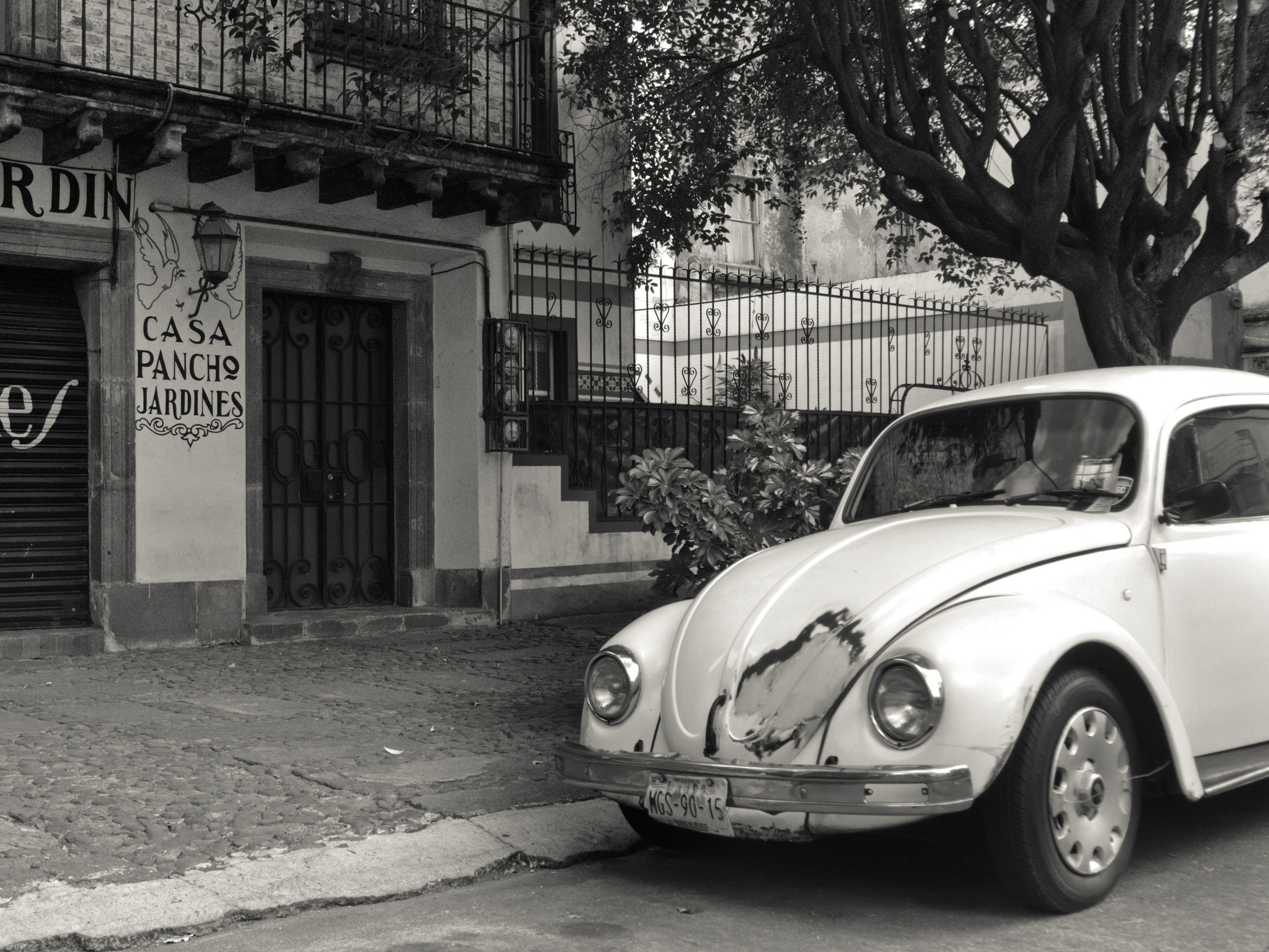 A Beetle in La Roma | © Danny Navarro/Flickr