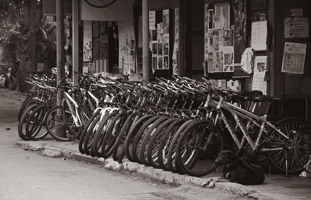 Bike Rental Shop on Pulau Ubin | © Schristia/Flickr