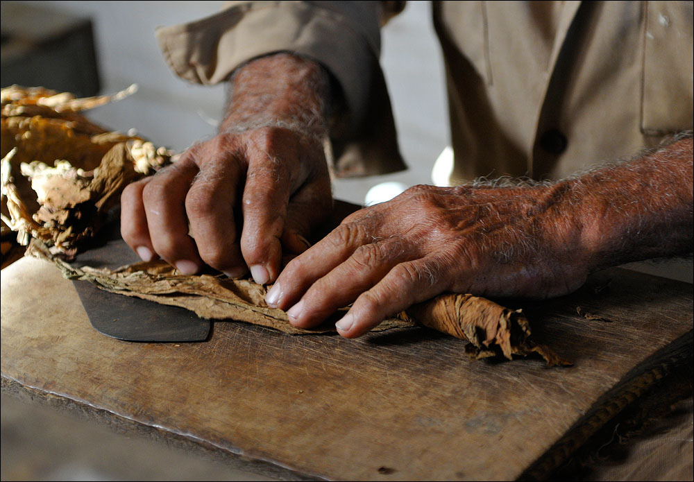 Famous hand-rolled Cuban cigars | © Thomas Münter / Flickr