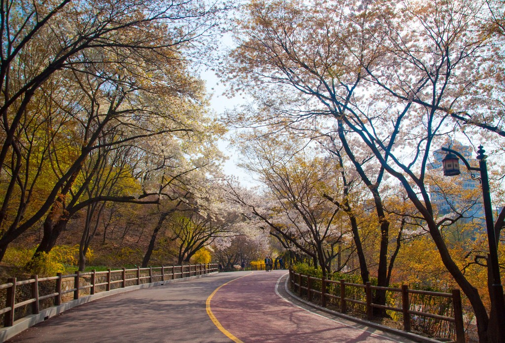 Namsan Park in fall | © Jordi Sanchez Teruel / Flickr