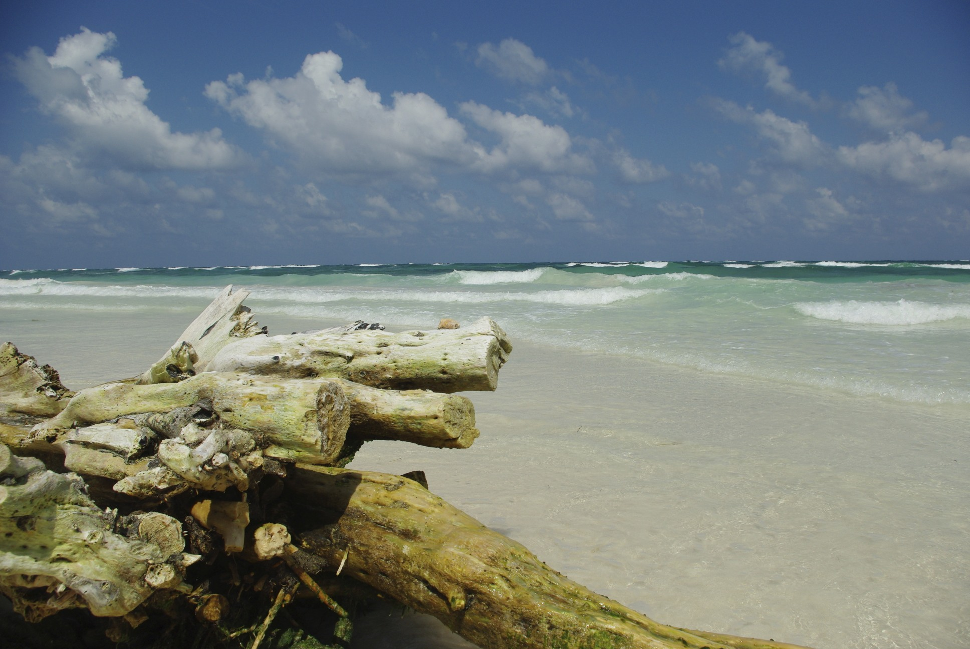 The beaches in Tulum are stunning | © Stopardi/Flickr