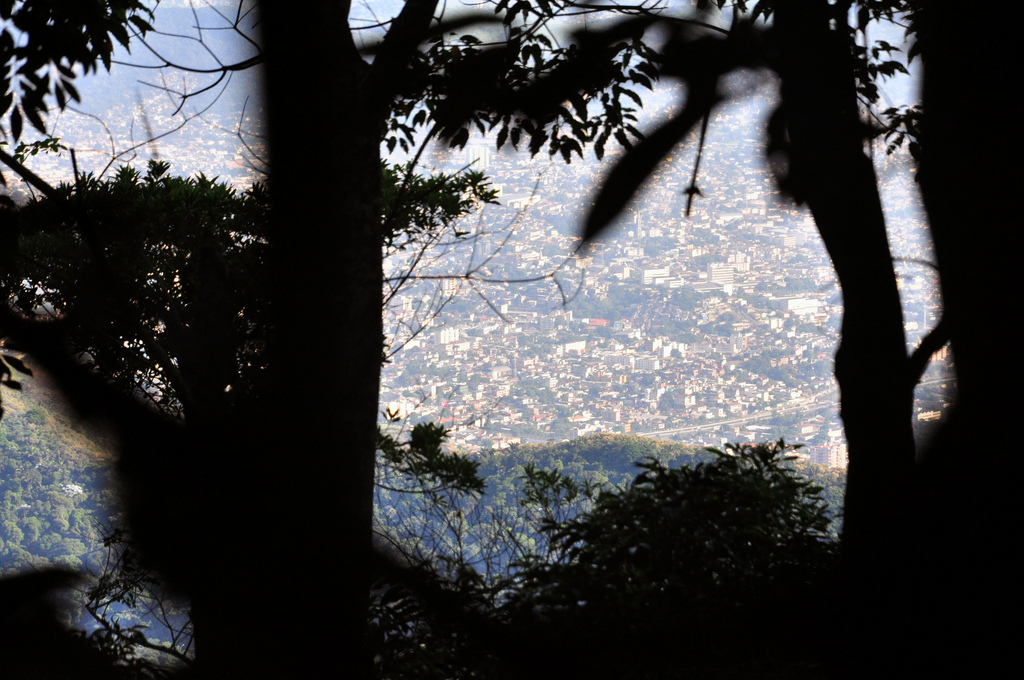 The view in between the trees of Tijuca forest |© Alexandre Macieira|Riotur/Flickr