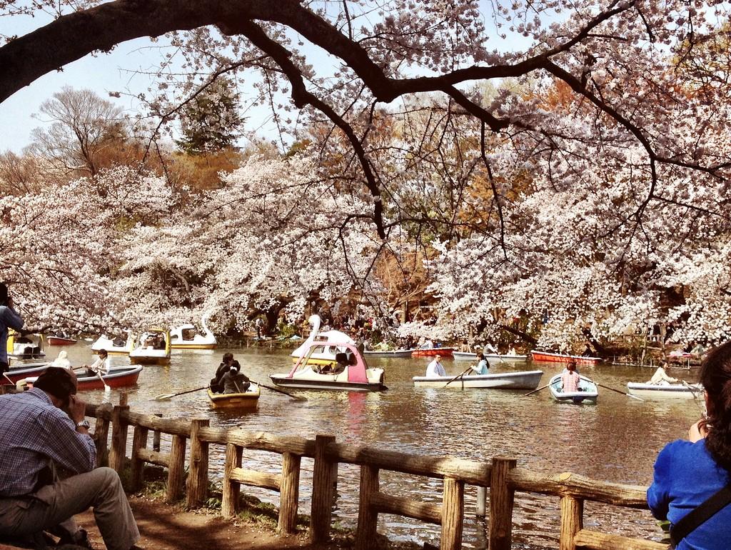 Inokashira Park is one of the main attractions of Kichijoji | © Karl Baron/Flickr