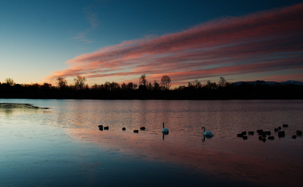 Duddingston Loch | © Magnus Hagdorn/Flickr