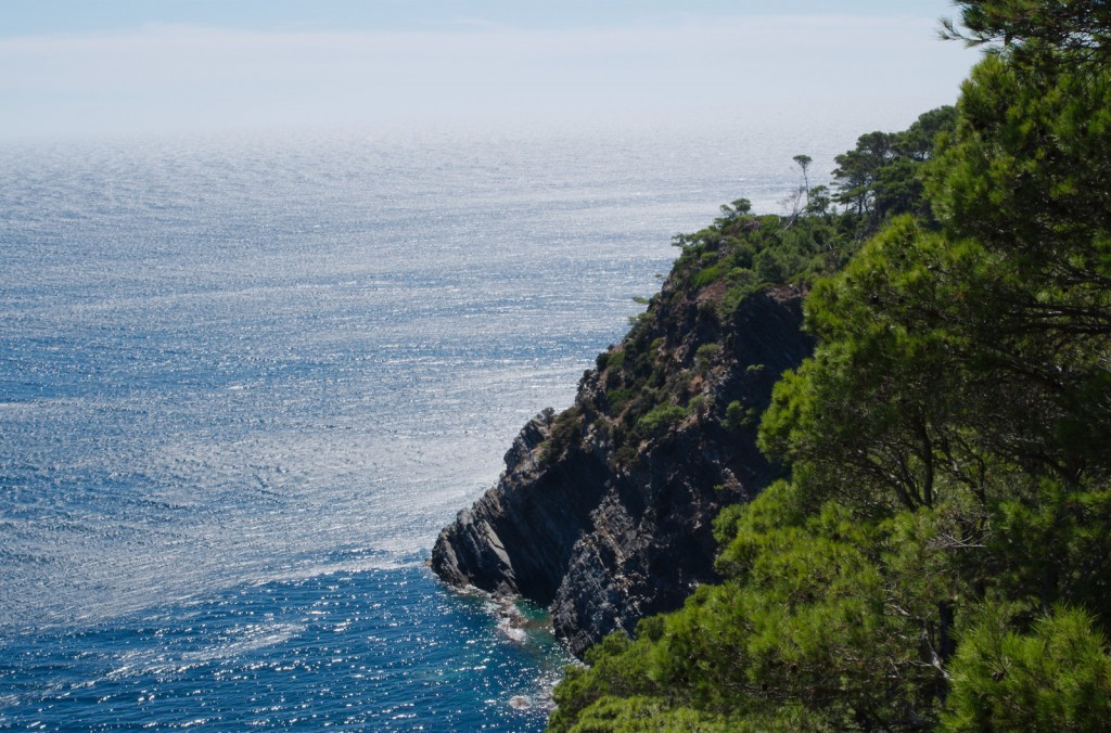 There are many beautiful cliffs on Porquerolles | © Allan Day/flickr